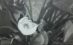 """ פיבונאצ'י לבן כלה לילי "" 11"" x 17"" Oil on Oil Primed Canvas"