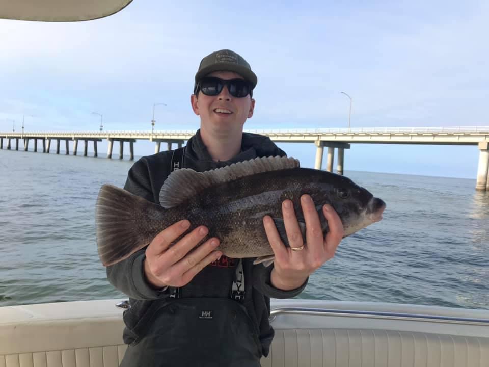 taug fish