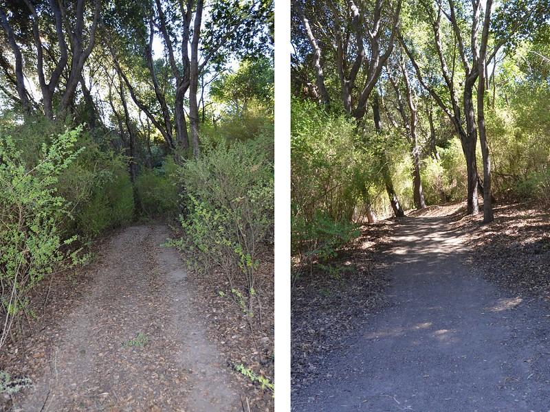 Uplift Family Services Cleared Trail (Before and After)