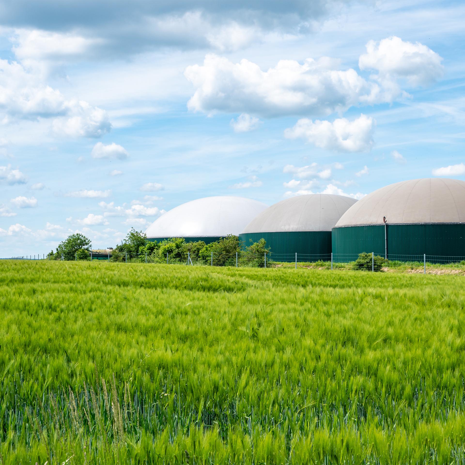 Biogas Offset