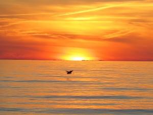 The sun seems to melt into a space beyond the water © 2016 Karen Rubin/news-photos-features.com