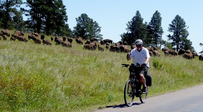 Badlands and Black Hills, Buffalos and Bikes: Wilderness Voyageurs' South Dakota Biketour