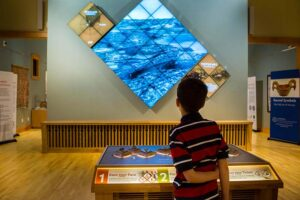 depiction of child looking at impressive light TV television HD display in museum