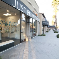 Just blow dry (store front)