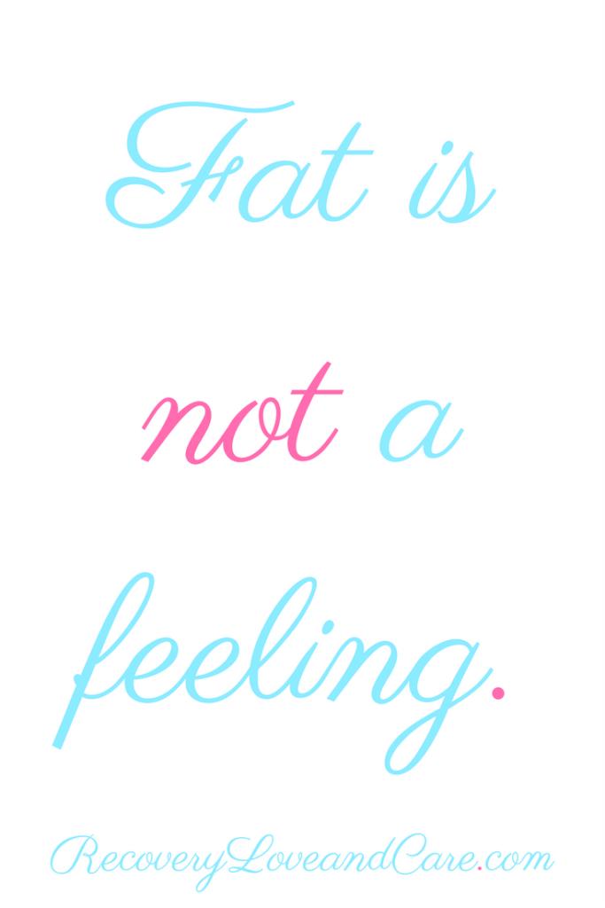 Fat Is Not a Feeling!!