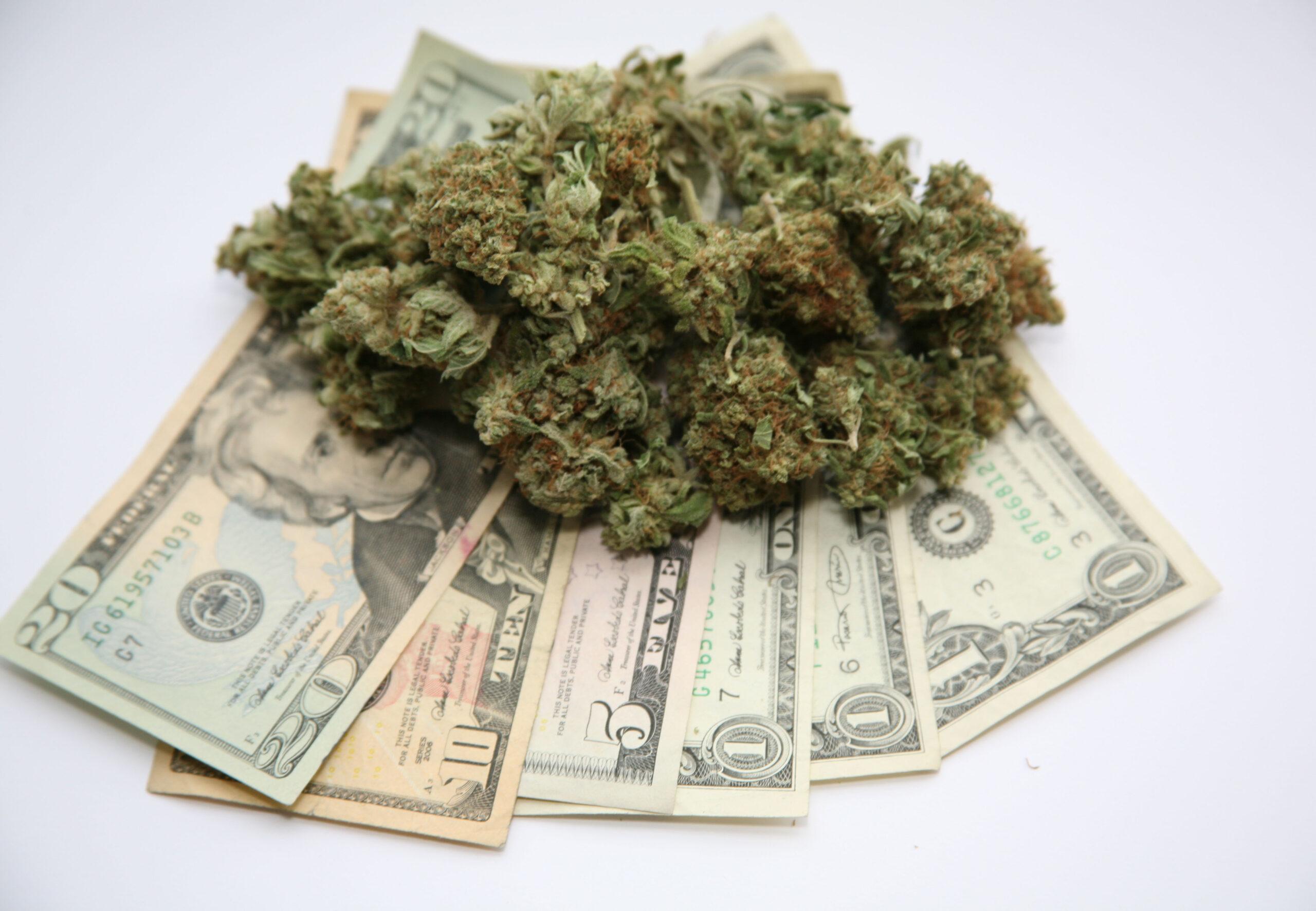 Cannabis News February 2020