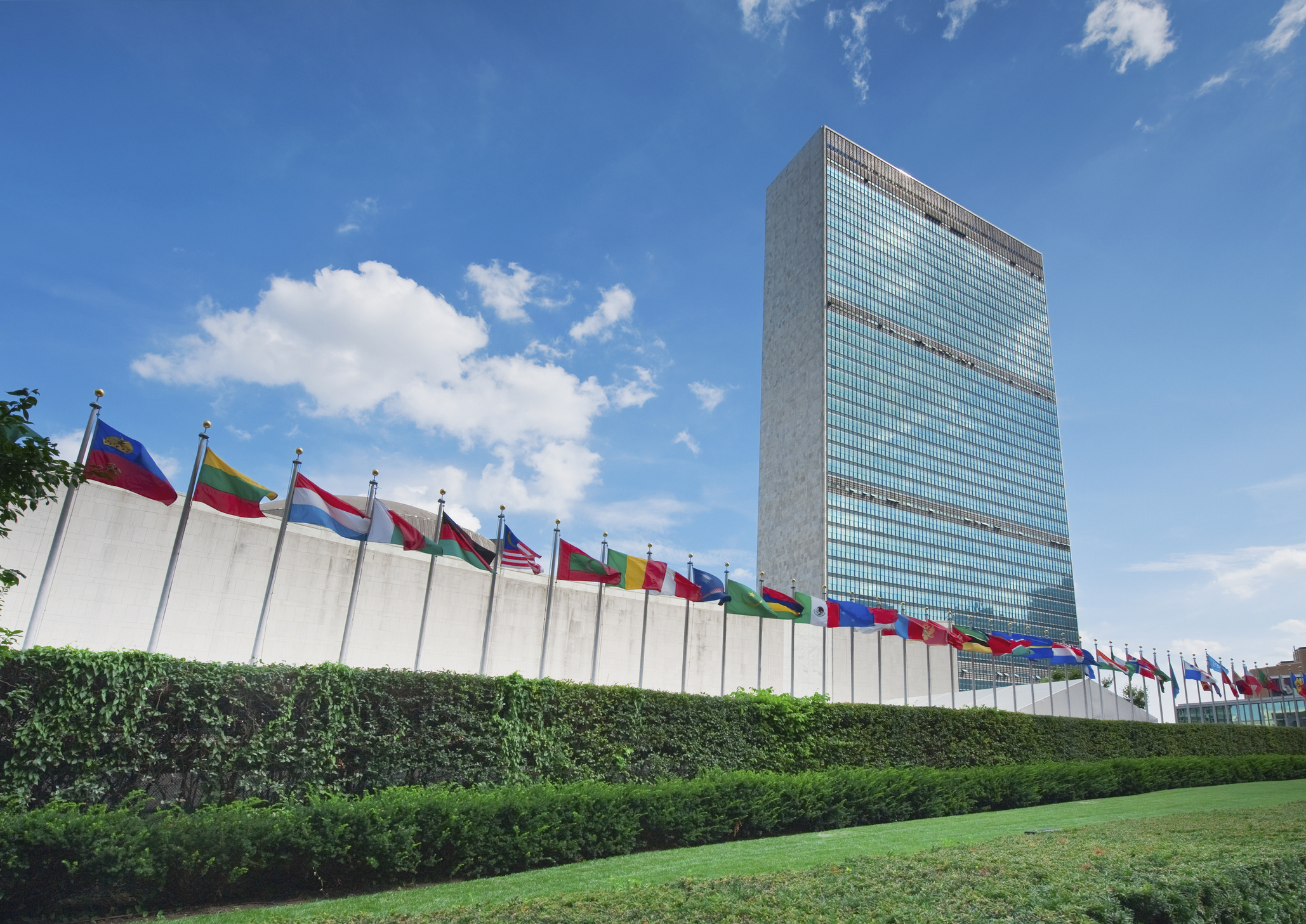 Cannabis United Nations