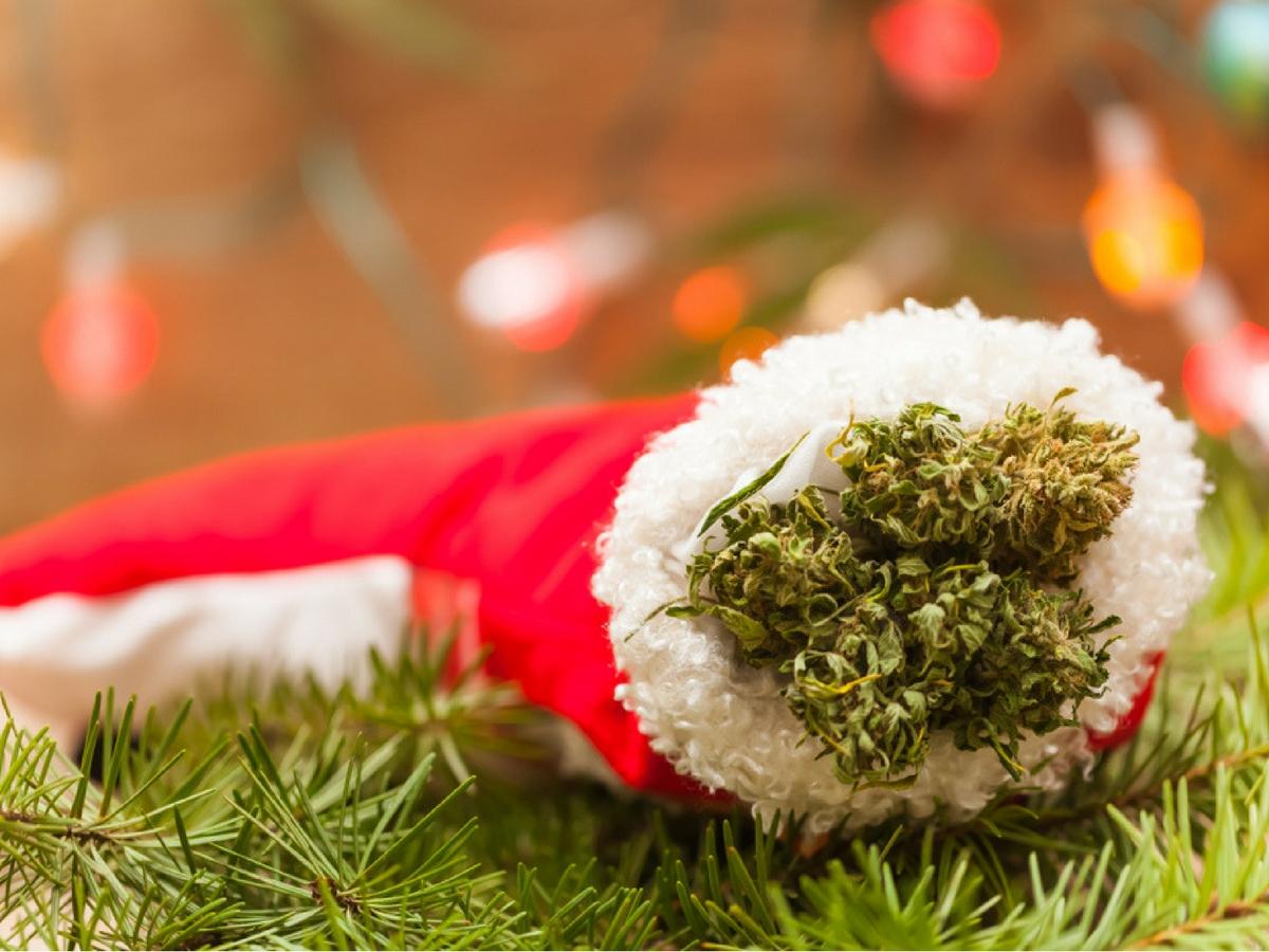 Cannabis christmas