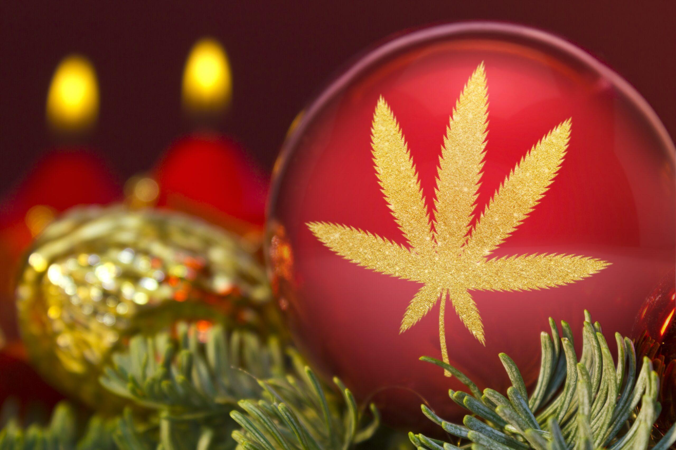 ACT December Cannabis Accounting News