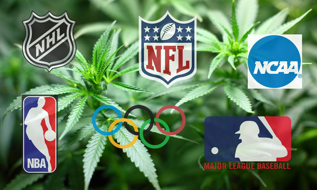 Cannabis Sports Doping Laws