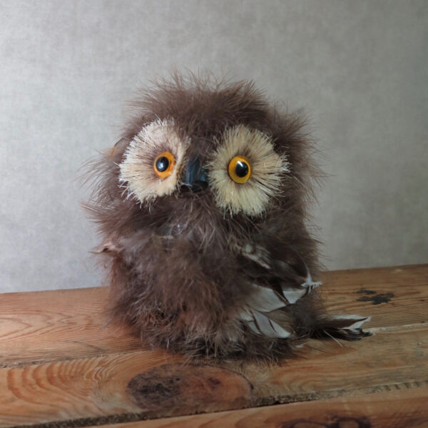 brown feather owl home decor