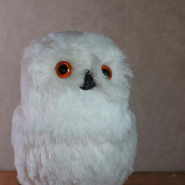 large snowy owl home decor winter face
