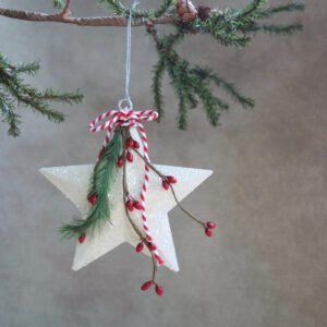 white star ornament with pine and red berries by sarah binder