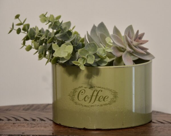 Green Coffee Tin with Succulents 8x10 Front