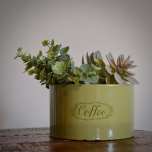 Green Coffee Tin with Succulents Square
