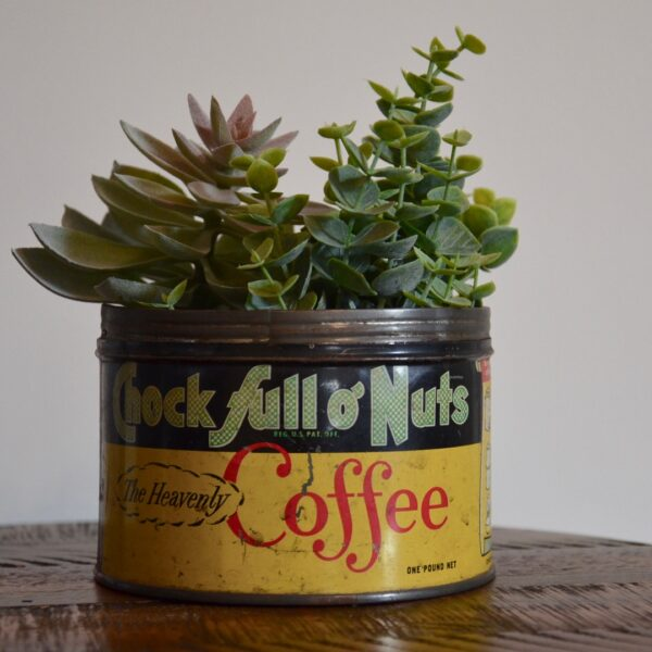 Vintage Chock Full O Nuts Coffee Tin Yellow Green Red with Succulents