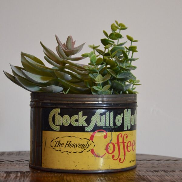 Vintage Chock Full O Nuts Coffee Tin Yellow Green Red with Succulents Tilted