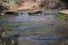 creek03