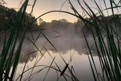 lake_mist