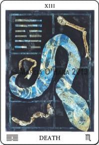 blue snakeskin on blackbackground