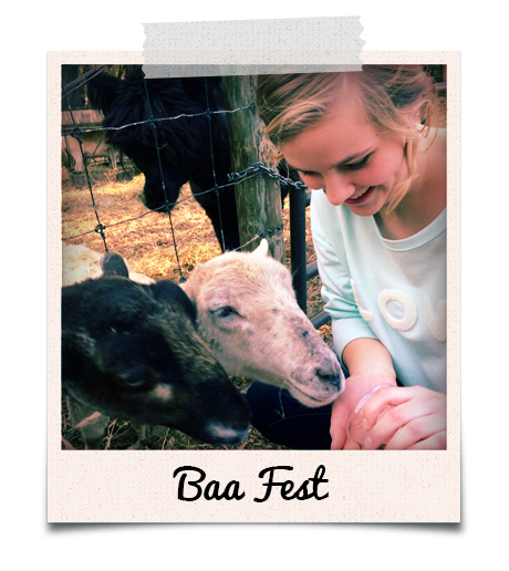 Baa Fest at Powers Farm Market