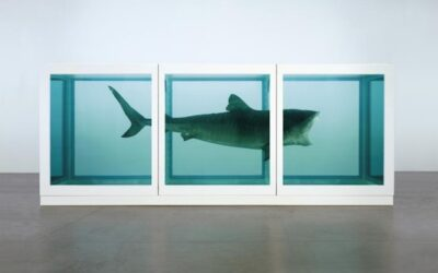 Is a Shark in a Tank of Formaldehyde Really Art? Really?