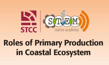 Roles of Primary Production in Coastal Ecosystem