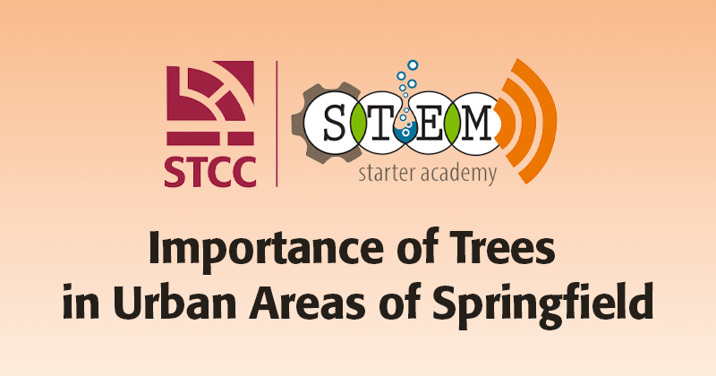 Importance of Trees in Urban Areas of Springfield