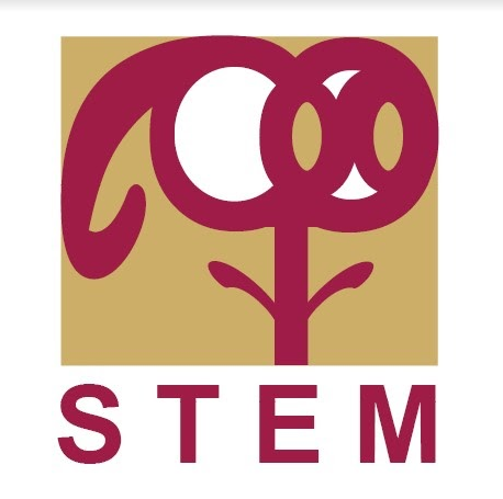 Student reflects on STCC Creates