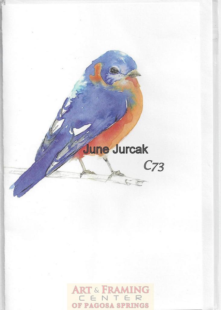 CardBluebird
