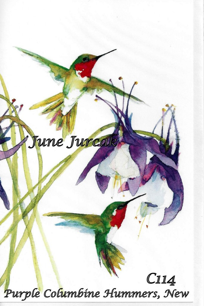 Jurcak pruple columbine hummingbirds