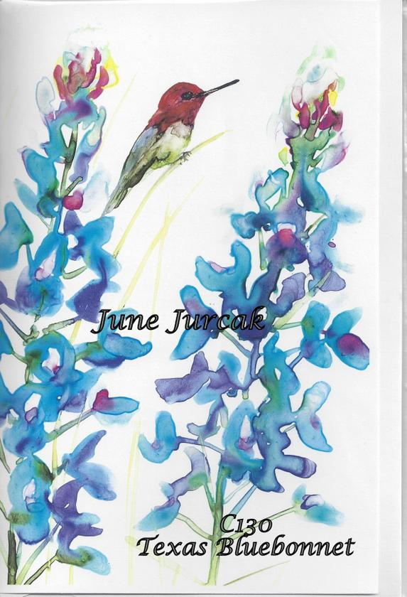 C130 hummingbird Texas BlueBonnet