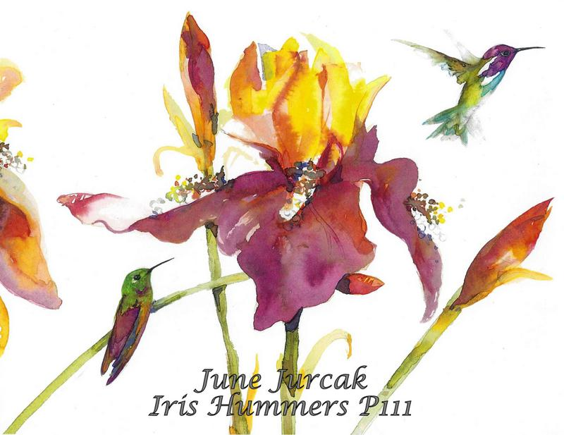 jj2016-22 p111 iris hummingbirds