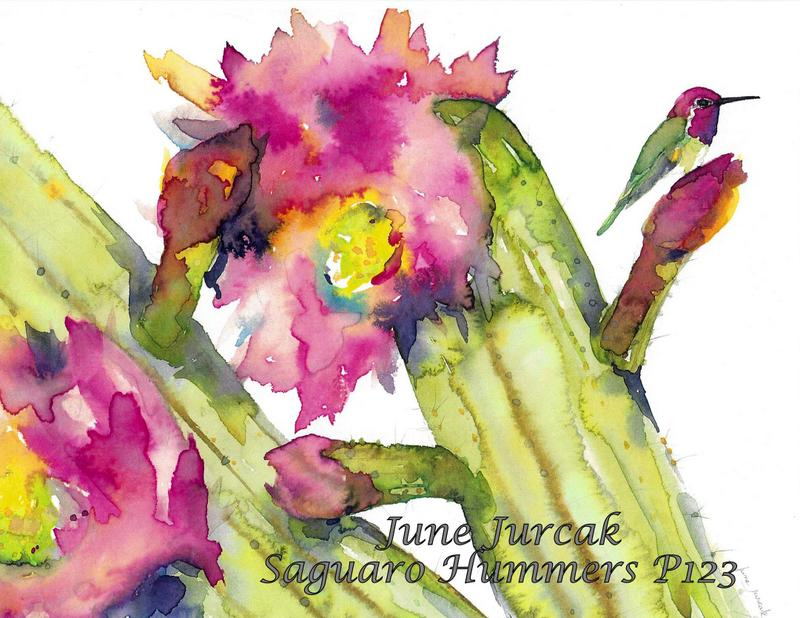 jj2016-6 saguaro hummingbird p123