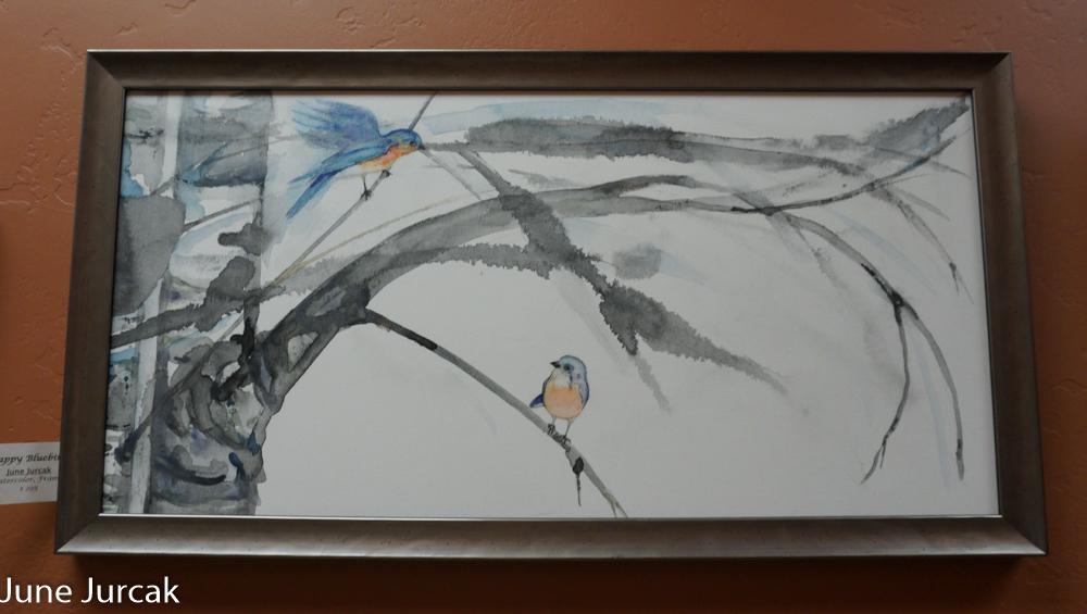 Jurcak Aspen Bluebirds