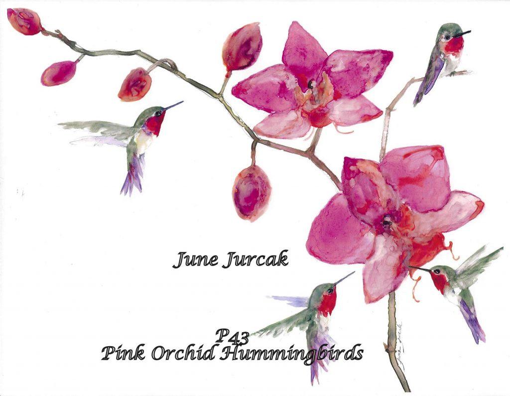 P43 Pink Orchid Hummingbirds