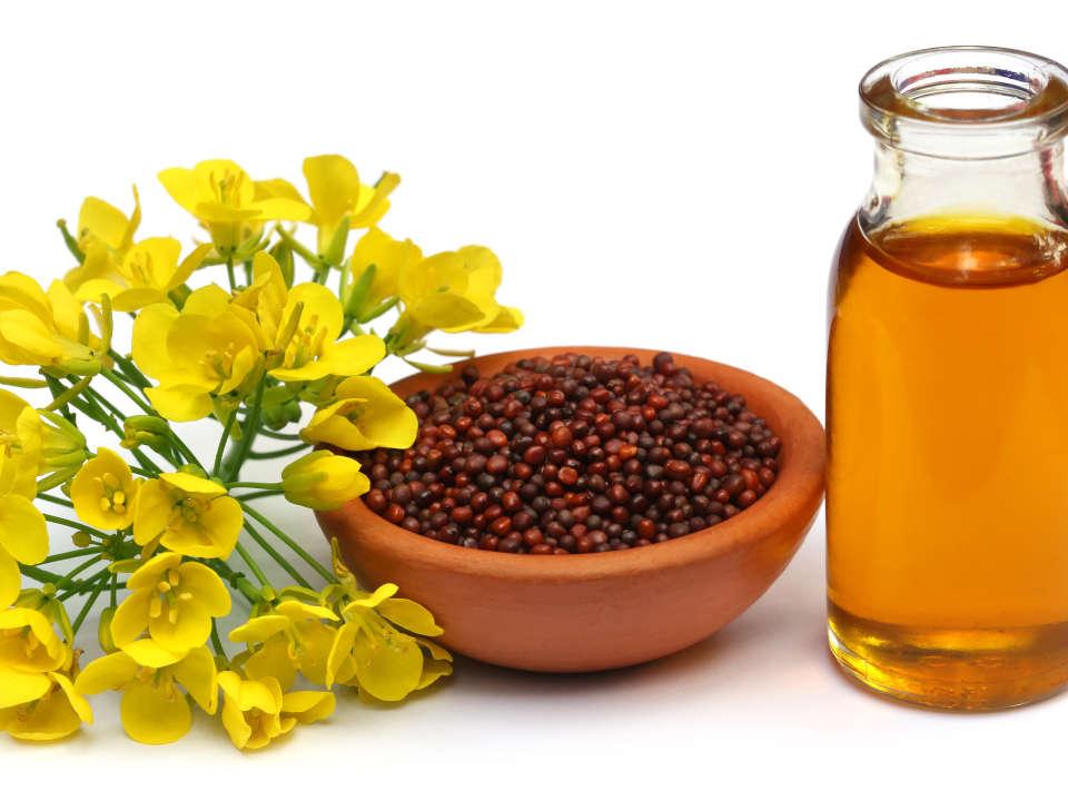 Mustard is food and medicine