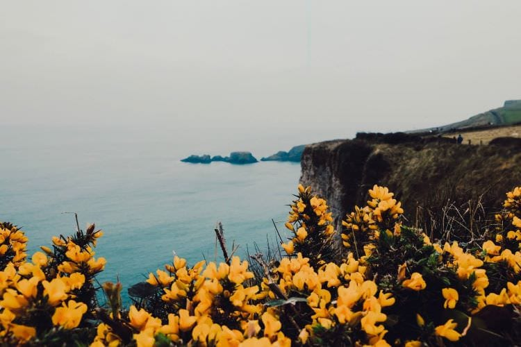 Northern Ireland: A small country with a Titanic personality