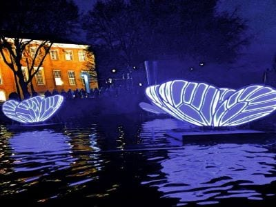 Butterfly Effect by Masamichi Shimada  Amsterdam Light Festival