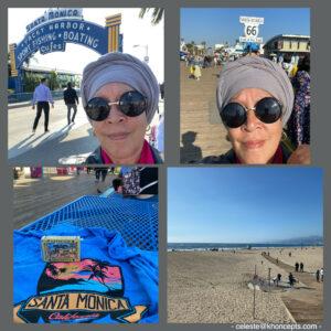 Shore excursion tour of Santa Monica Pier
