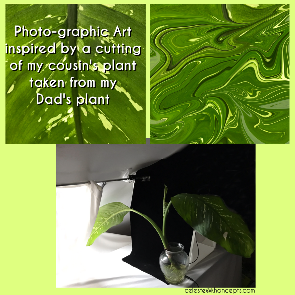 Photo-graphic art inspired by Dad's green plant