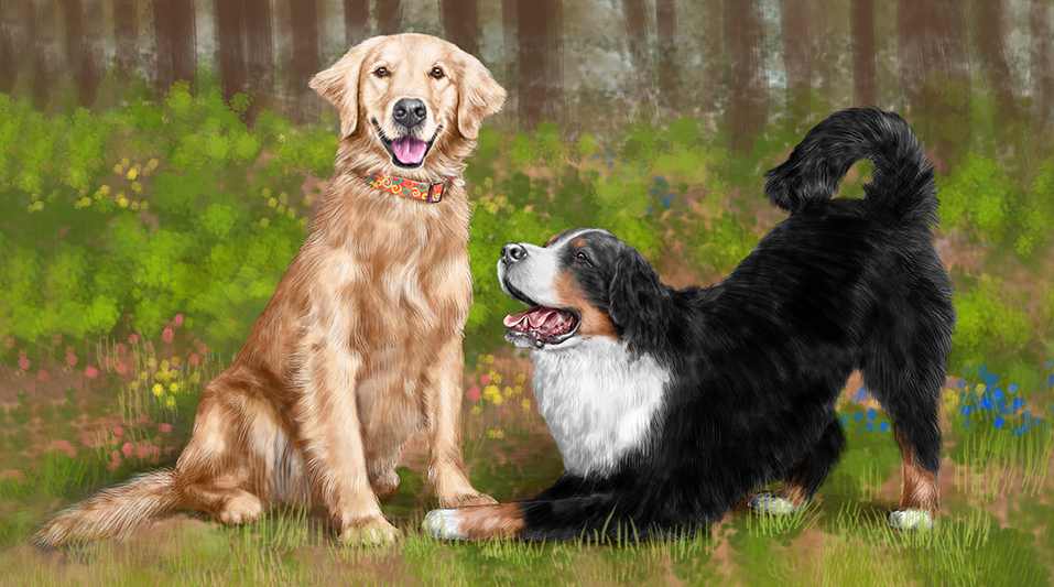 Digital illustration of a Golden Retriever and Bernese Mountain Dog sitting together in the forest, dogs, purebred dog, forest, dogs playing, playbow