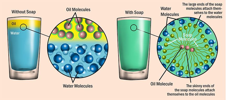 digital illustration by John Fraser showing how oil molecules dissolve in soapy water from the book Idiot's Guide Science Mysteries Explained, molecules, science experiment, scientific illustration, soap molecules, oil molecules