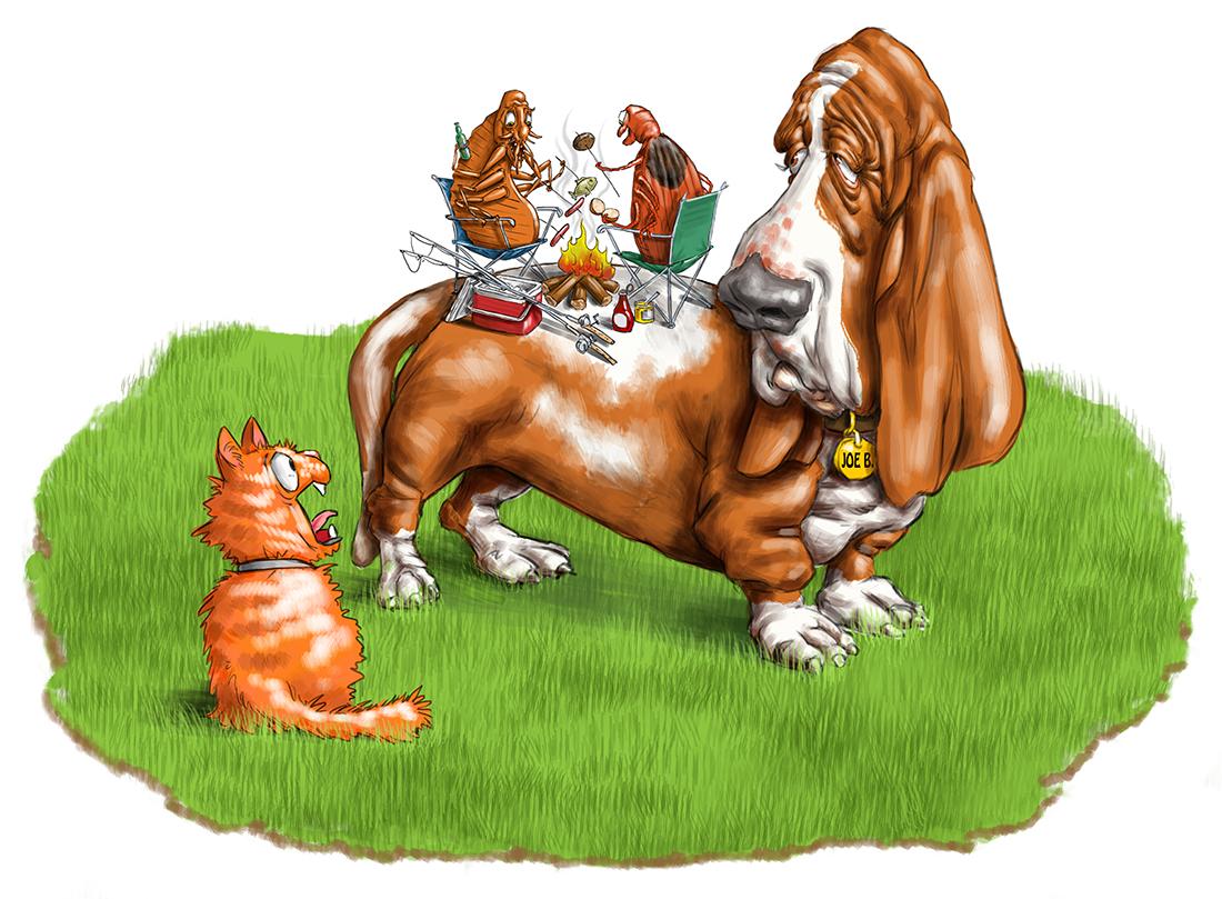 Advertising illustration by John Fraser of Sad Basset Hound with Fleas Ticks, pest control, fleas, ticks, parasites, campfire