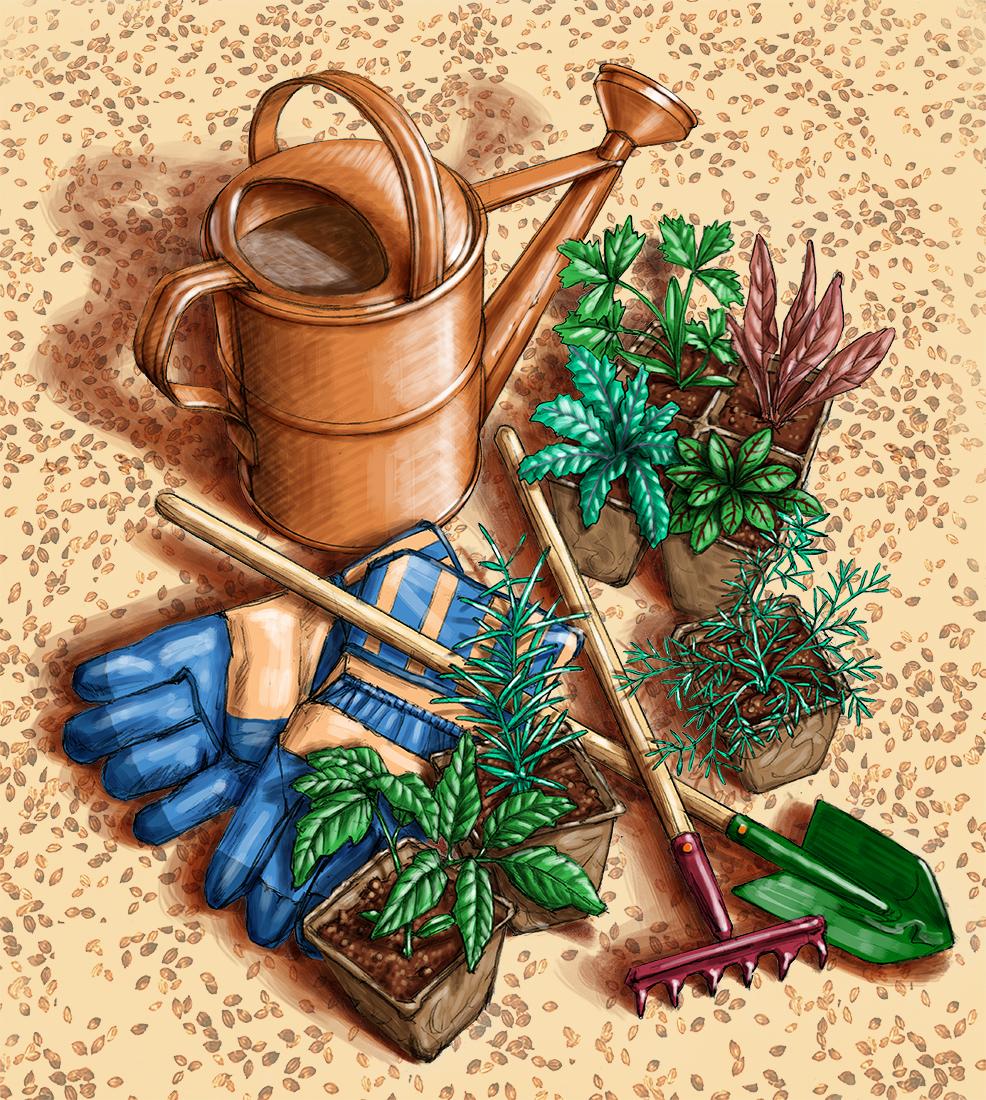 digital advertising illustration by John Fraser of gardening tools for potting soil bag, gardening tools, gardening, shovel, spade, plants, herbs, seedlings, watering can, work gloves