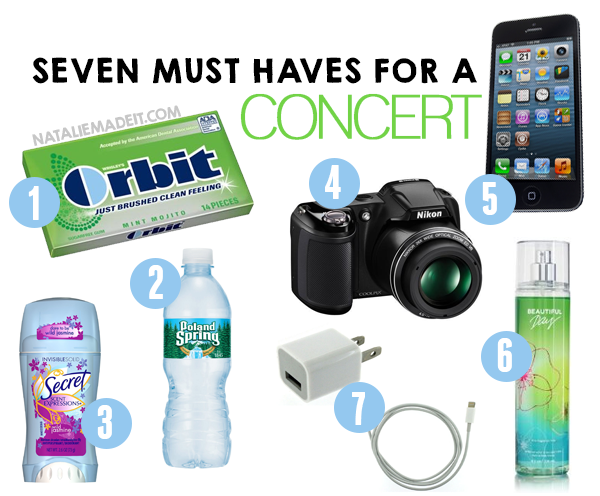7 Things You Must Bring With You To A Concert
