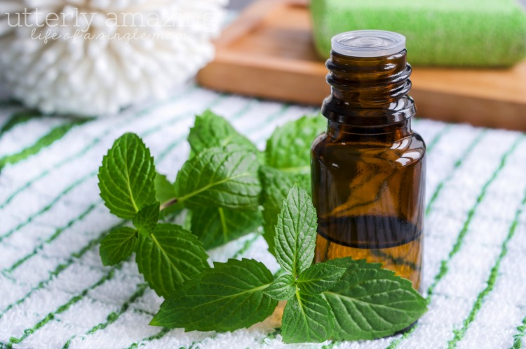 Cleaning Tips with Peppermint Essential Oils