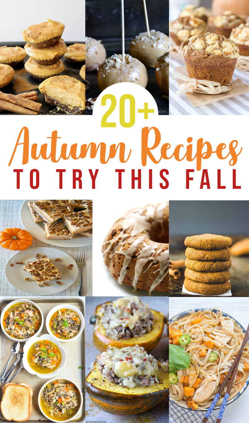 20+ Totally Worthy Autumn Recipes To Try This Fall   Part One