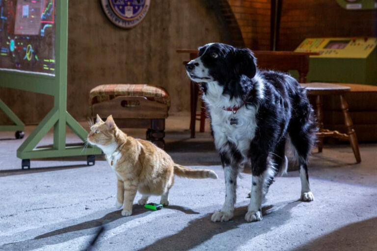 Cats & Dogs 3: Paws Unite! #CatsandDogs3