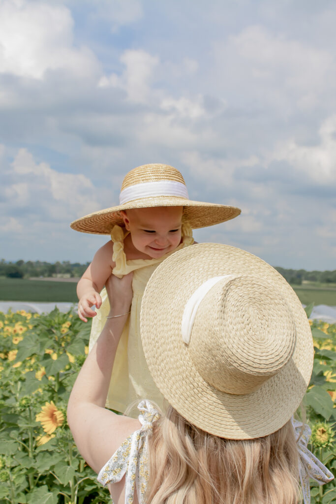 Sunflower Fields 11